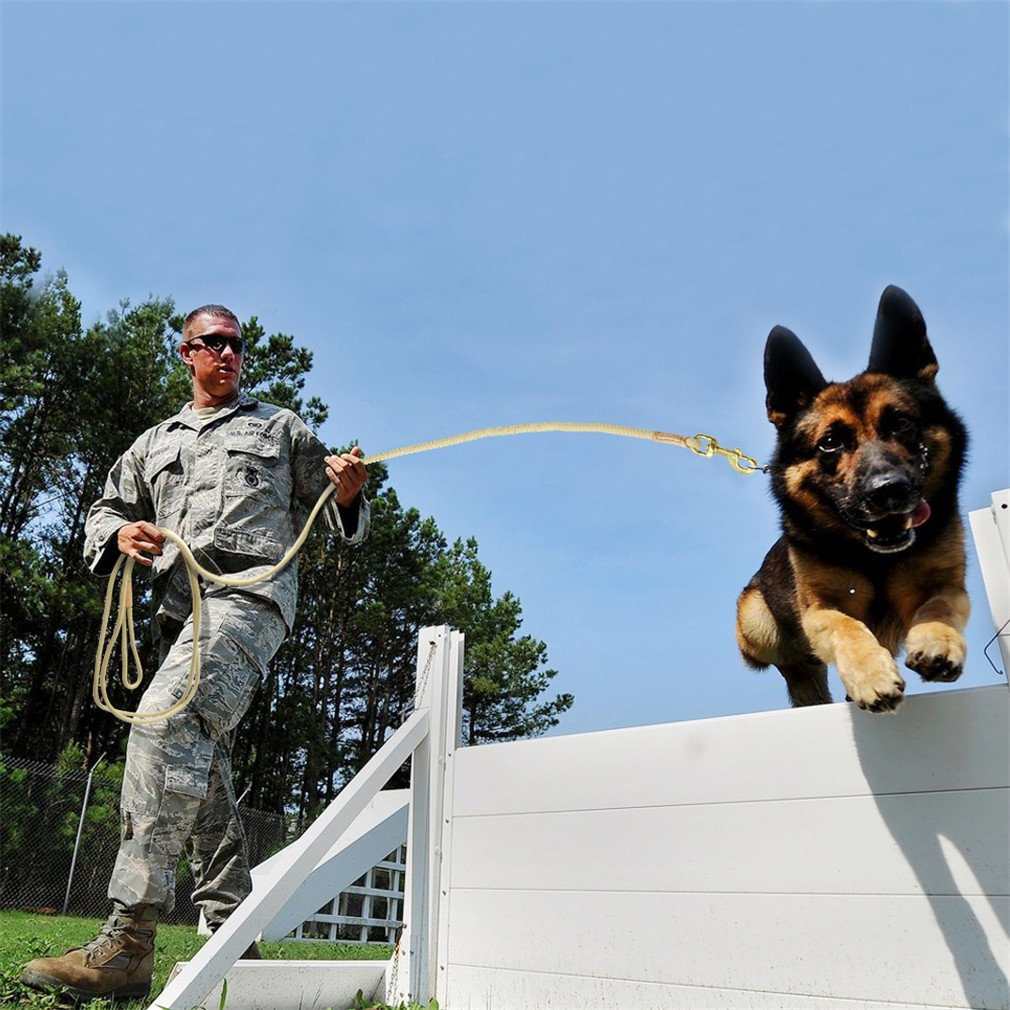 LOVESHI Durable Dog Tracking Leash Nylon Long Leads Rope Pet Training Walking Leashes 3M 5M 10M 20M for Medium Large Dogs Non-Slip Beige 20m by LOVESHI (Image #4)