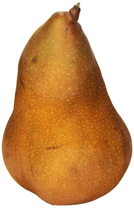 Bosc Pear, One Large