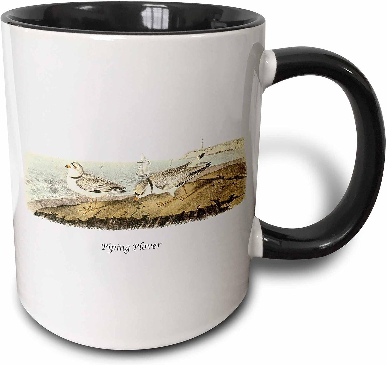 3dRose 114106/_4 Blue Heron by John James Audubon Two Tone Mug 11 oz Black//White