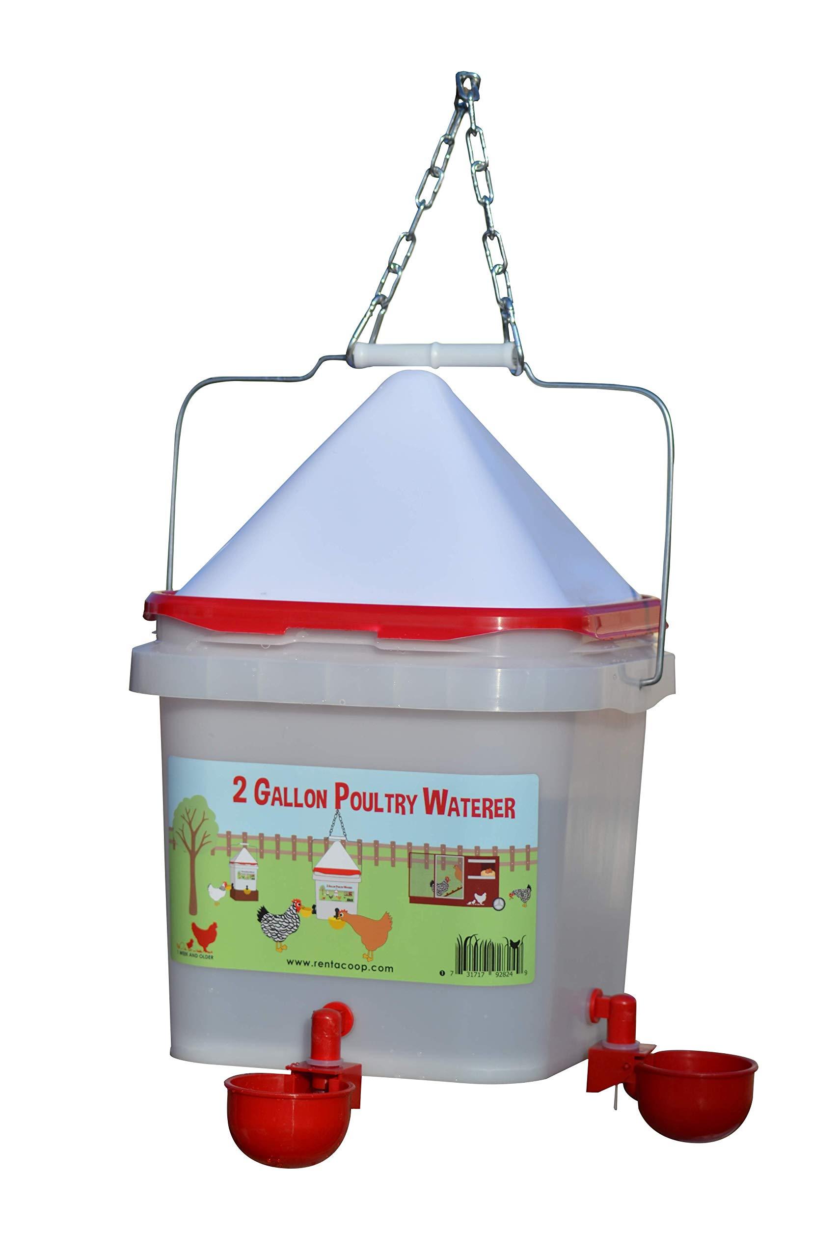 RentACoop 2 Gallon Red Cup Waterer (Corner) by RentACoop