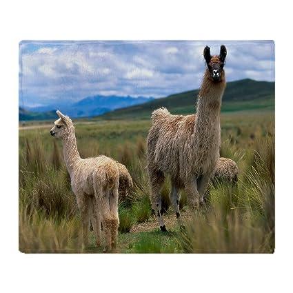 Amazon CafePress Llamas Throw Blanket Soft Fleece Throw Delectable Llama Throw Blanket