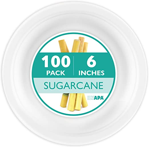 Amazon.com: Juego de platos desechables para aperitivo o ...