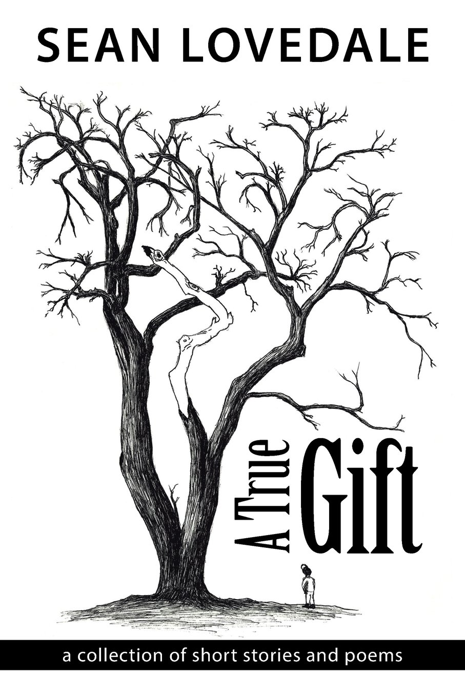 Download A True Gift: a collection of short stories and poems pdf epub