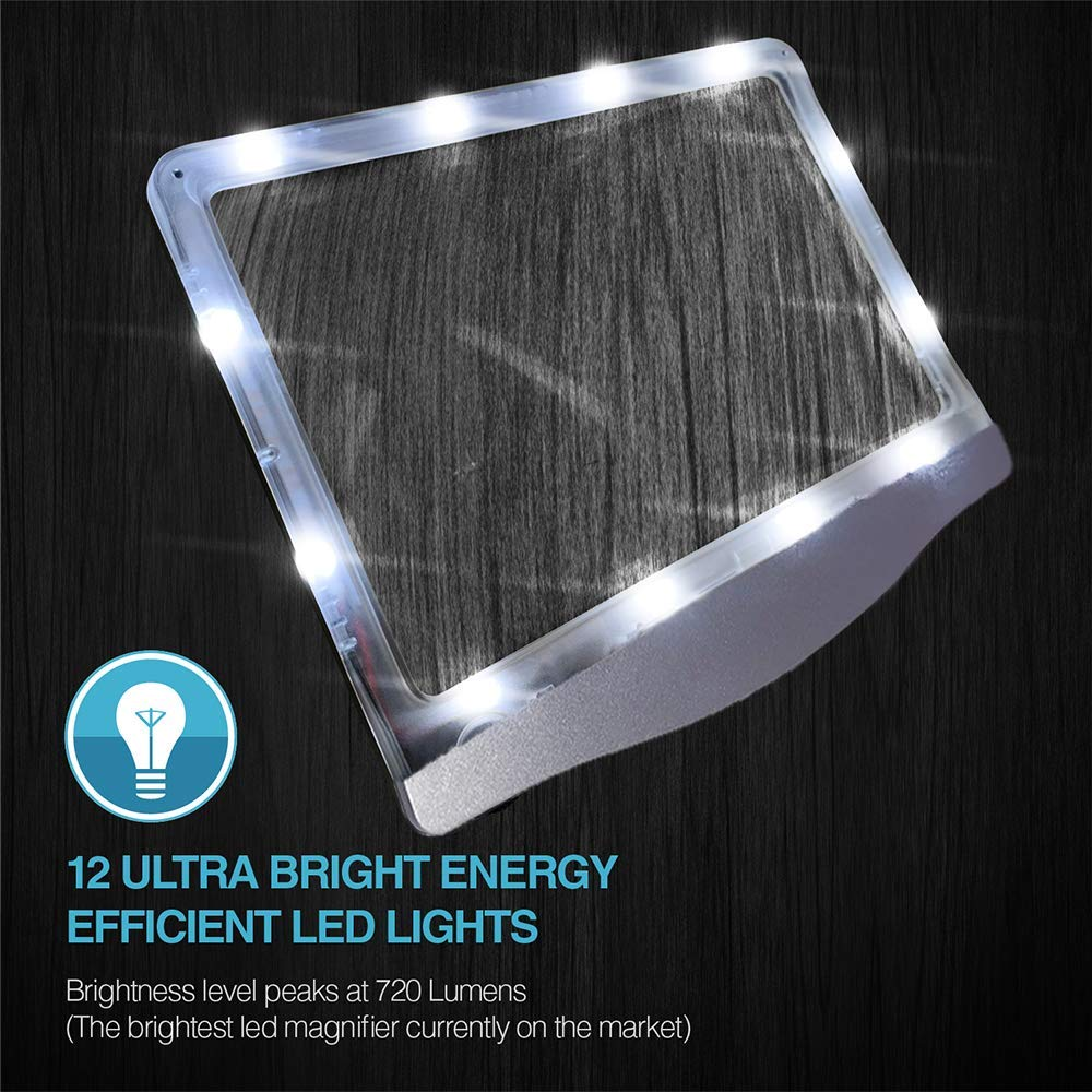 Amazon.com: [Recargable] Lupa de página LED ultrabrillante ...