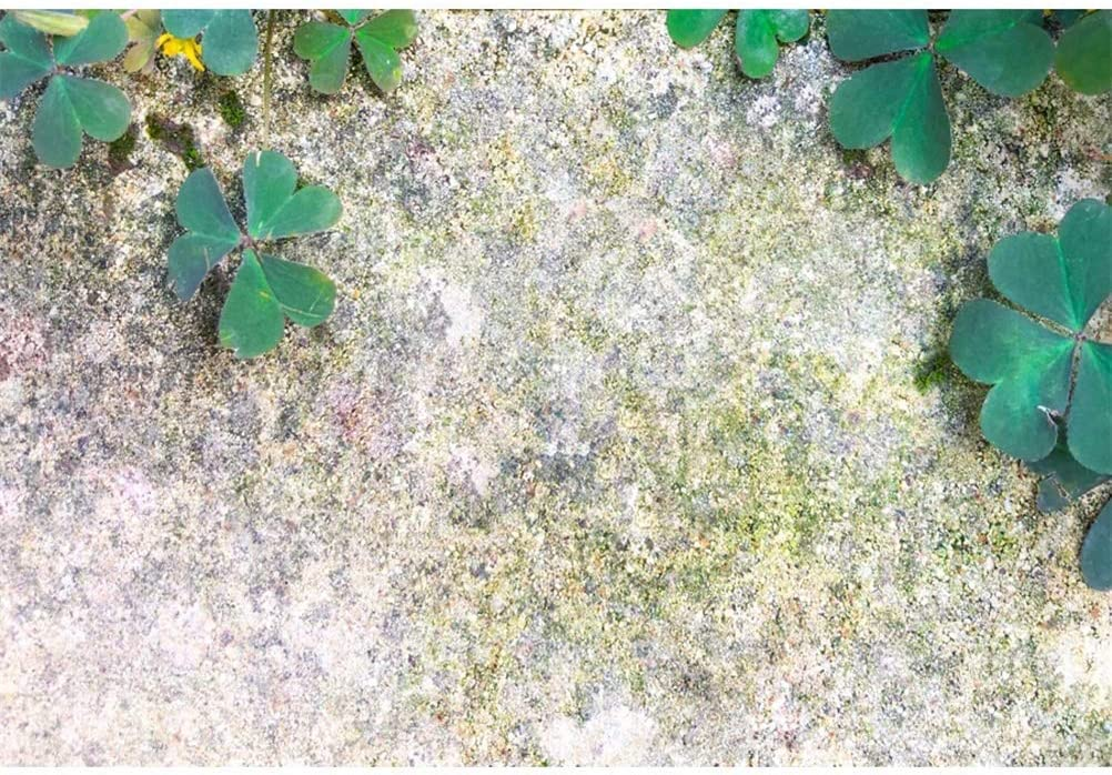 8x6.5ft St.Patricks Day Backdrop Polyester Clovers Shabby Grunge Moldy Ground Photography Background Irish Traditional Festival Community Activities Video Luck Hope