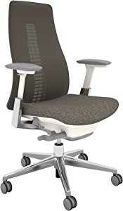 Haworth Fern High Performance Office Chair with Ergonomic Innovations and Flexible Mesh Back, Mushroom
