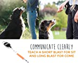 Mighty Paw Training Whistle, Silent Dog Whistle