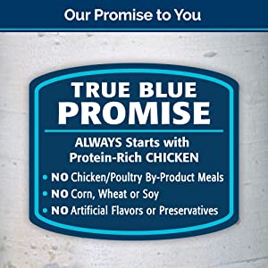 Blue Buffalo Wilderness High Protein Grain Free, Natural Adult Dry Cat Food, Chicken 12-Lb