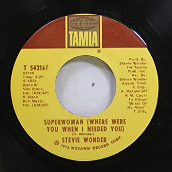 Missing lyrics by Stevie Wonder?