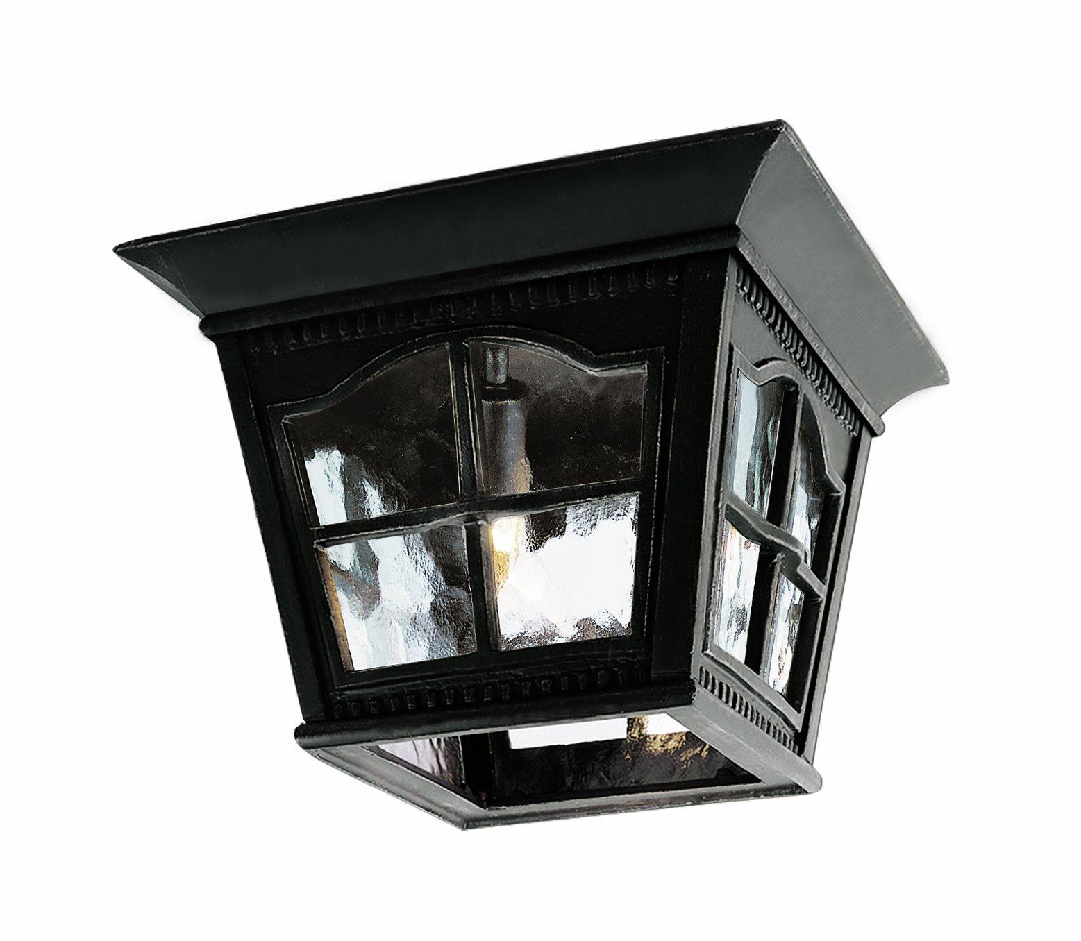 Trans Globe Lighting 5427 BK Outdoor Briarwood 8'' Flushmount Lantern, Black
