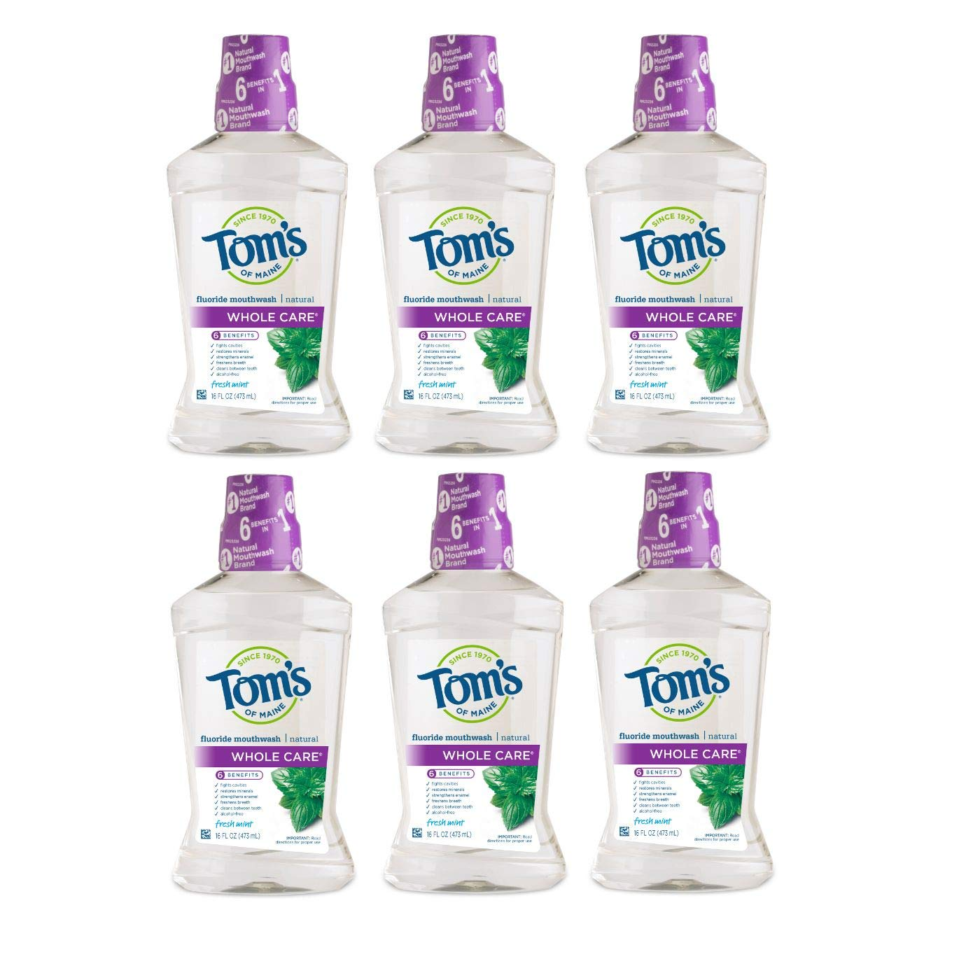 Tom's of Maine Whole Care Natural Mouthwash, Natural Mouthwash, Fresh Mint, 16 Ounce, 6-Pack