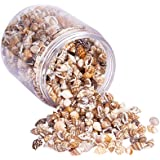 PandaHall Elite About 1400-1500 Pcs Tiny Sea Shell Ocean Beach Spiral Seashells Craft Charms Length 7-12mm Candle Making, Home Decoration, Beach Theme Party Wedding Decor, Fish Tank Vase Fille