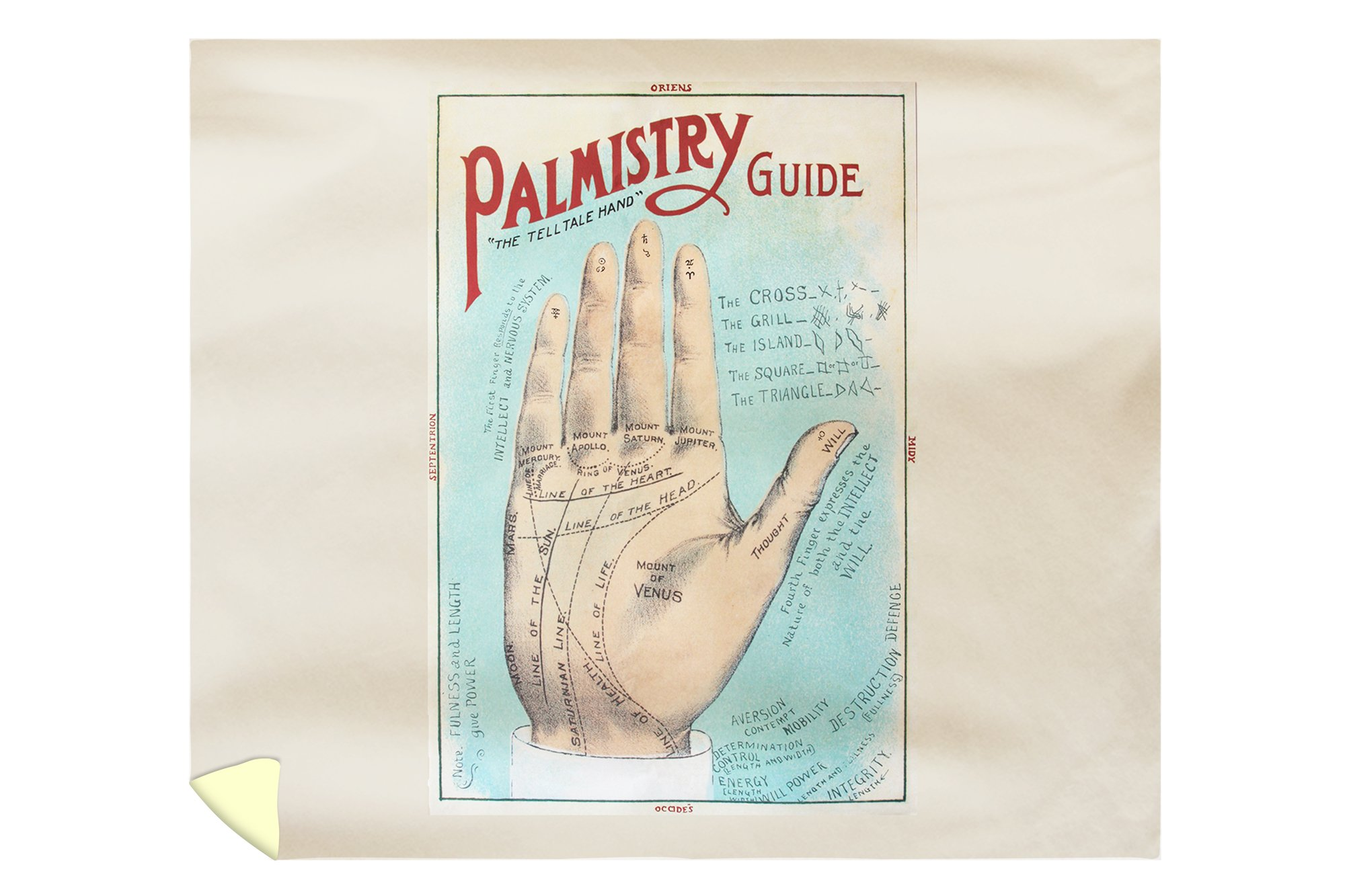 A Picture of Good Health - Vintage Palmistry Chart Lithograph (88x104 King Microfiber Duvet Cover)