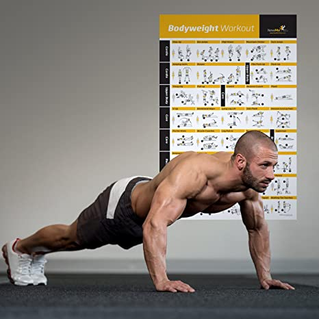 NewMe, fitness poster with exercises, total body workout