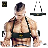 Arm Blaster for Biceps & Triceps Dumbbells & Barbells Curls Muscle Builder Bicep Isolator for Big Arms Bodybuilding…