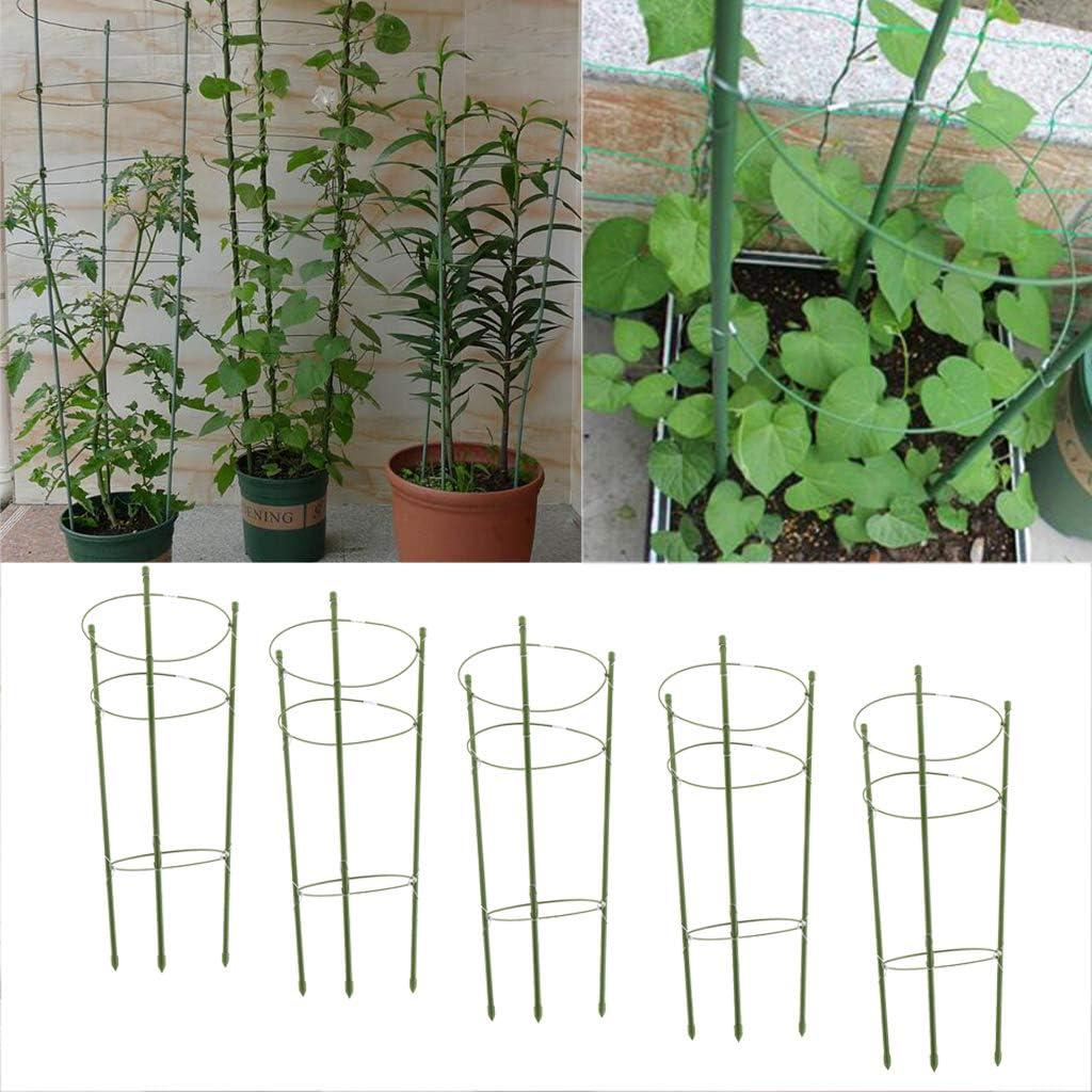 VANKOA 5 X Pflanzenst/ützringe Gartengitter Kletterpflanzen Blumen Wachsen K/äfig