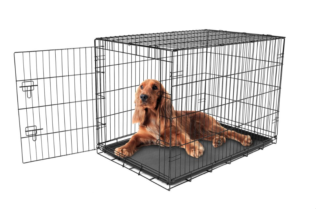 Carlson Pet Products Secure and Foldable Single Door Metal Dog Crate, Intermediate by Carlson Pet Products