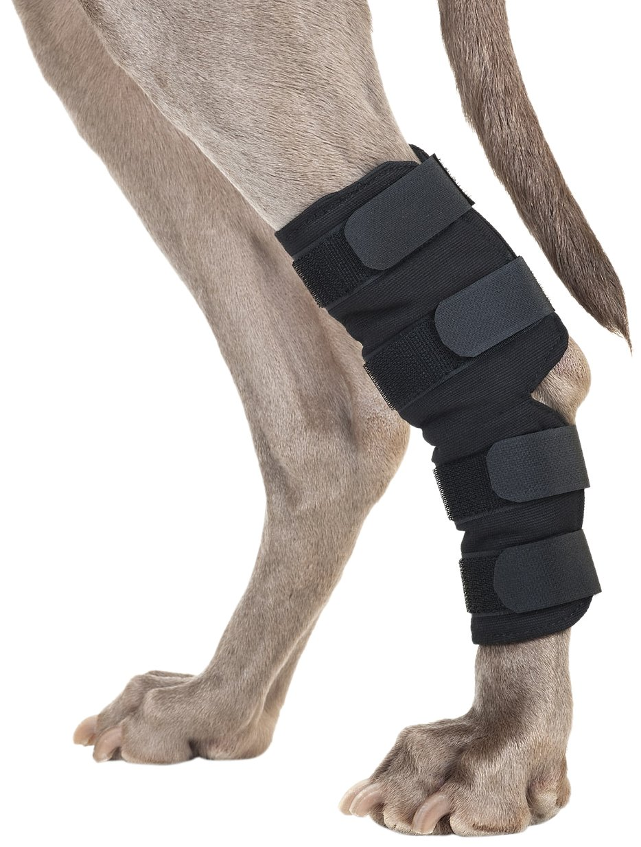 Back on Track Therapeutic Dog Rear Leg/Hock Brace (Pair) Small 7.25-Inch Length, 4 to 6.25 Inches Top Width, 3 to 4.75-Inches Bottom Width with 4 Adjustable Velcro Straps by Back on Track