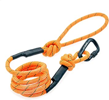 Embark Pets - Correa Sierra para perro con cuerda de escalada de ...