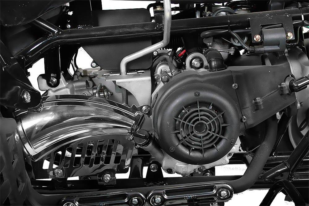 Akp Carbon 150cc Quad 10 Automatik CVT R/ückw/ärtsgang Offroad Bike ATV