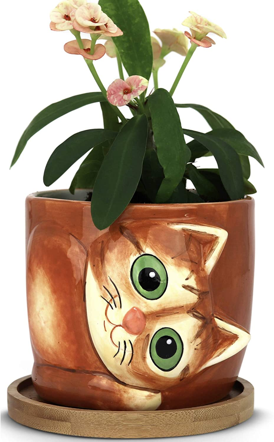 Window Garden Animal Planters - Large Kitty Pot (Sugar) Purrfect for Indoor Live House Plants, Succulents, Flowers and Herbs, Super Cute Planter Gift for Cat Lovers, Office, Christmas.