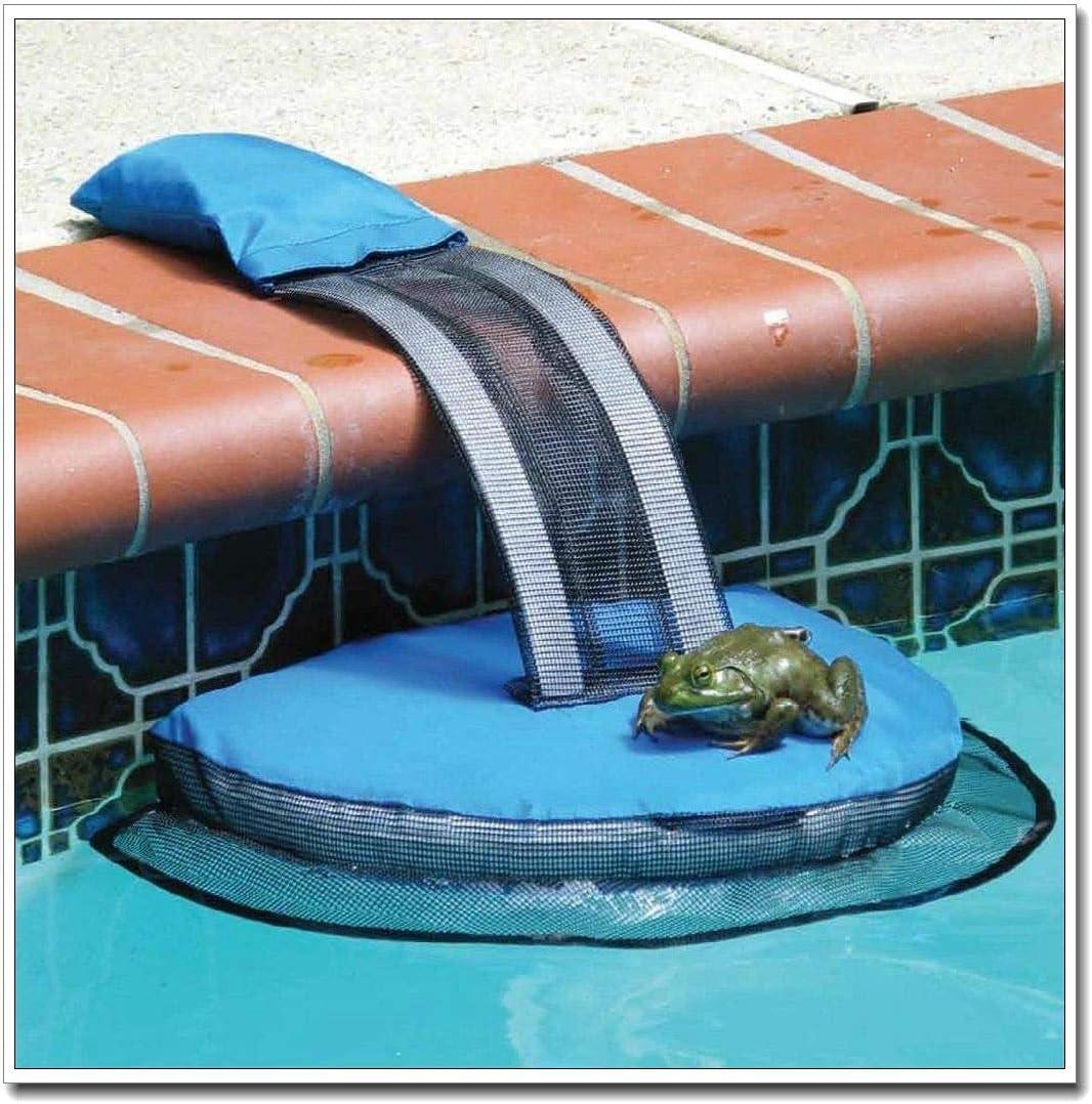 Rampa de escape de salvamento de animales para piscina, tronco de rana, piscina, rescate de animales, rampa de escape, apta para pato, rana, tortuga y más: Amazon.es: Juguetes y juegos