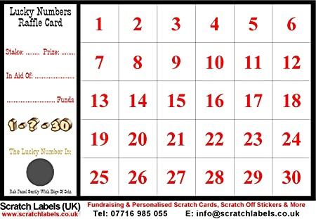 100 Lucky Numbers Fundraising Raffle Cards (30 Squares)