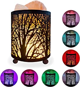 HOMY Natural Himalayan Salt Lamp in Forest Design, Metal Basket+Salt Rocks+3Watts LED Bulb in 54inches USB Cable, Multi Color Gradual Changing Mode & Warm Light Keeping Mode, Great Decor, Best Gift