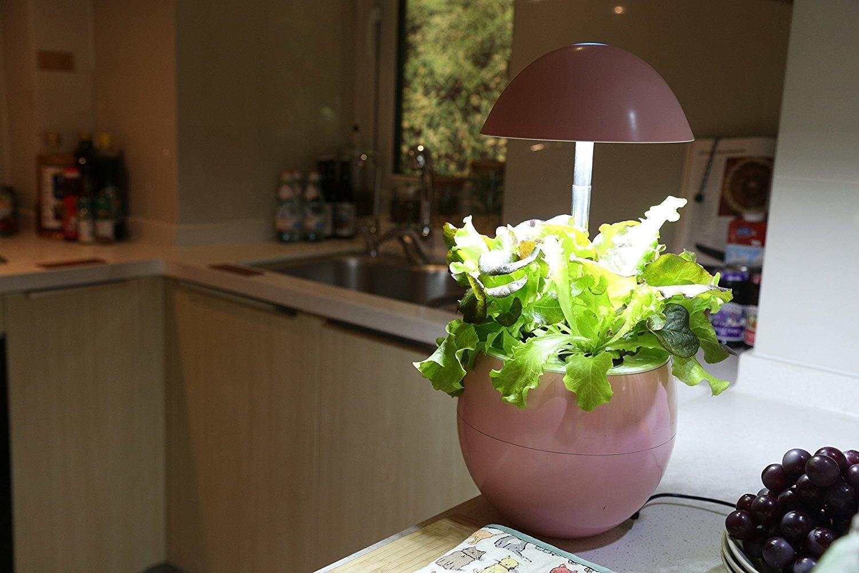 Amazon.com : 123WeGrow Hydroponic Indoor Garden System, LED Lights ...