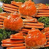 ズワイガニ 650g 姿 ずわいがに姿 本ずわい蟹 ボイル 【さっぽろ朝市 高水】