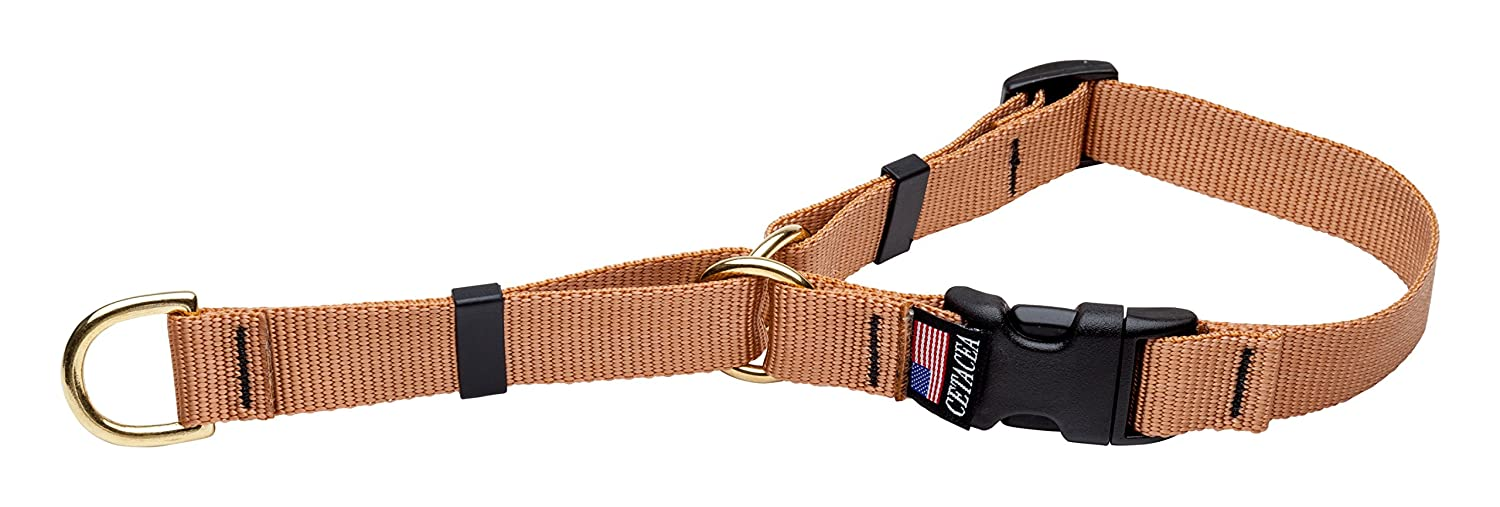 Cetacea Soft Martingale Collar, Large, Champagne