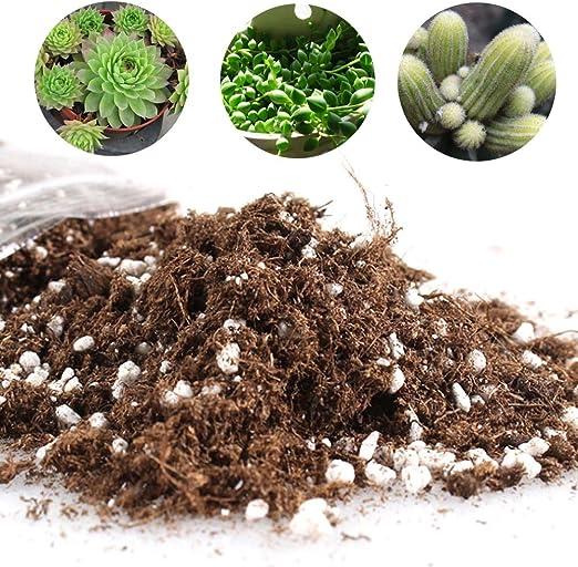 Cactus Suculento Planta Mezcla de Suelo - Home Garden Potting Soil ...