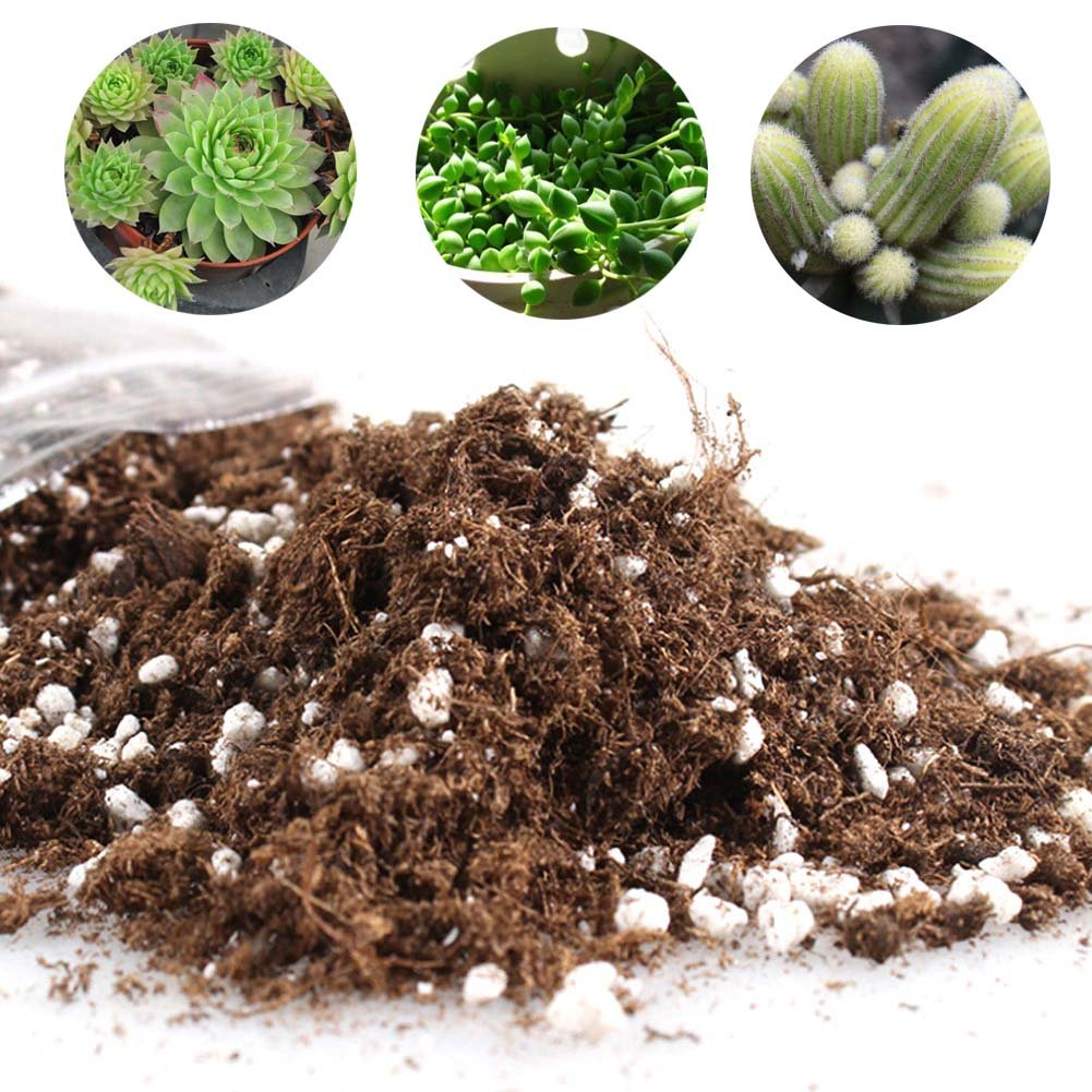 Yovvin Cactus Succulent Plant Soil Mix - Home Garden Potting Soil Growing Cacti - Water Saving Coco Coir