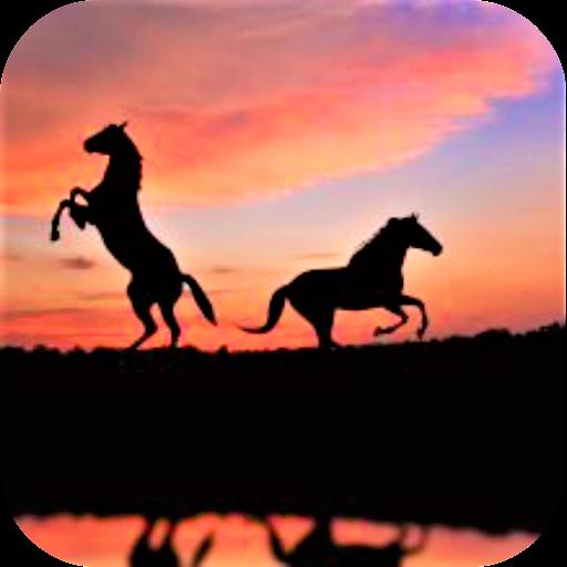 Pony Wallpaper - Horses Wallpaper