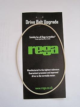 Rega - Correa de transmisión para tocadiscos, color blanco ...