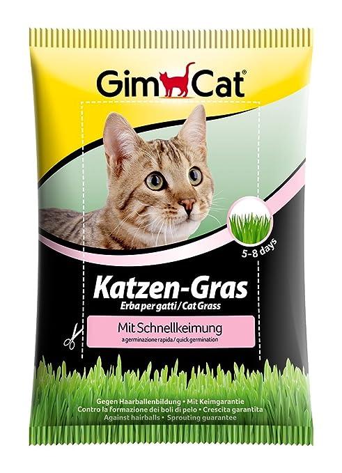 Hierba para gatos (Bolsa de 100g)