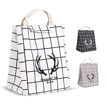 HOMESPON Reusable Lunch Bag Insulated Lunch Box Cute Canvas Fabric with Aluminum Foil Office Printed Lunch Tote Handbag Fordable for Women,Men,School Cactus
