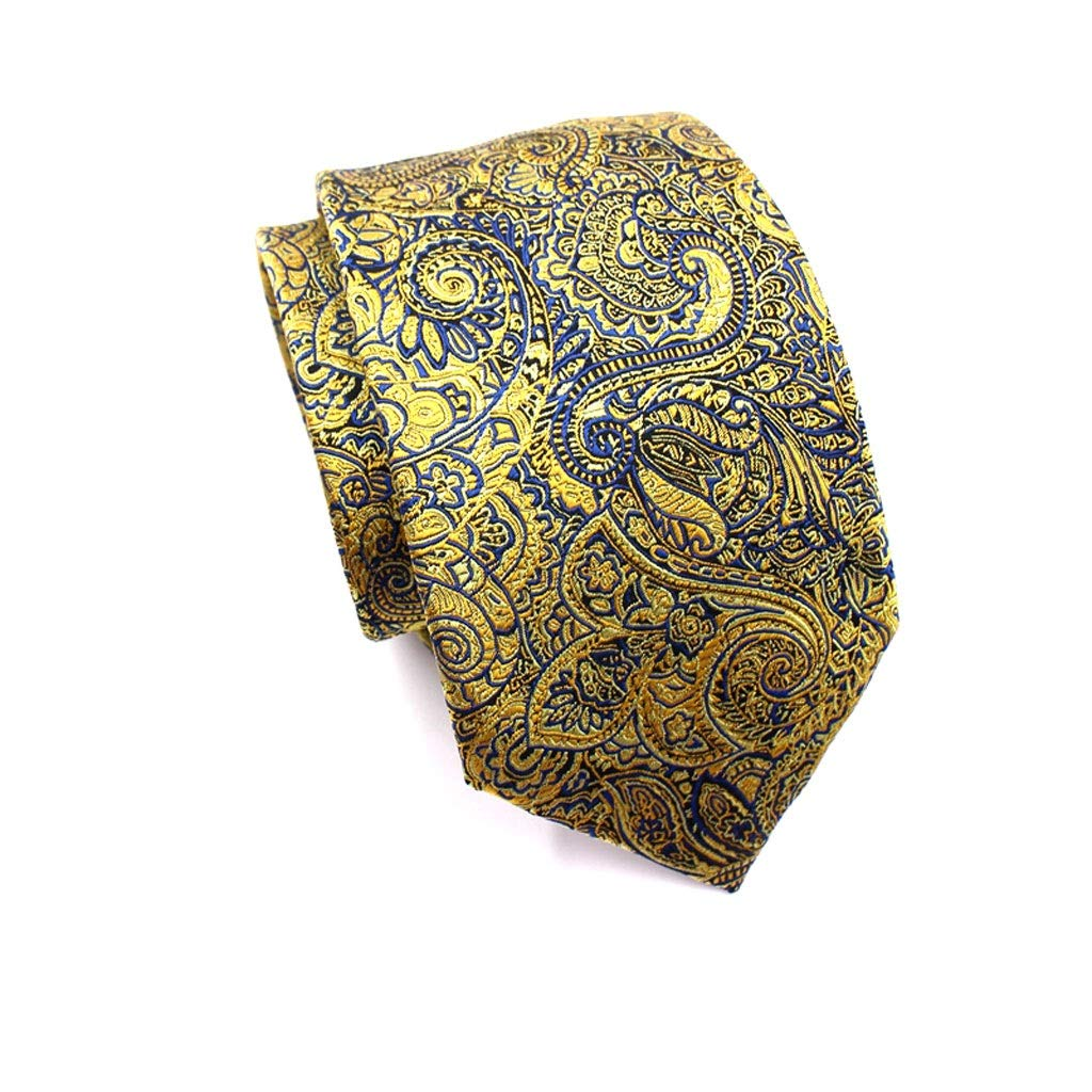 Golden Business Embroidered Silk Necktie Gift Box Regular Width LDG Floral Paisley Wedding Tie