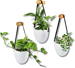 Wall Hanging Planters Succulent 3 Hanging Planter for Indoor Plants Air Plant Flower (White)
