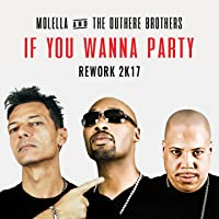 If You Wanna Party (Rework 2K17)