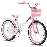 Royalbaby Jenny Girls Kids Bike 12 14 16 18 20 Inch Childrens Beginner Bicycles with Training Wheels Basket Pink White Purple