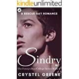 SINDRY: A Rescue Gay Romance (The Fennys Den College Series Book 3)