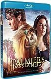 Palmiers dans la neige [Blu-ray]