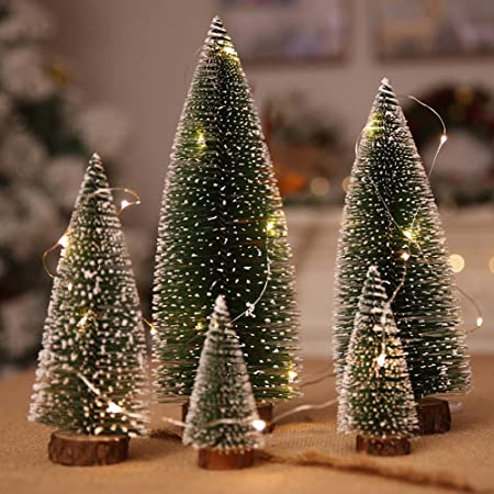 Christmas Trees with Lights
