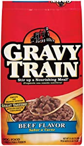 Delmonte Foods 799272 Gravy Train Dry For Dogs, 35-Pound