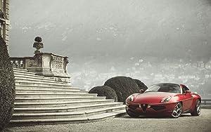 Alfa Romeo Disco Volante Touring Superleggera 36X48 Poster Banner