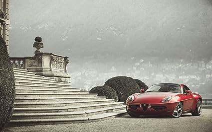 Alfa Romeo Disco Volante For Sale >> Amazon Com Alfa Romeo Disco Volante Touring Superleggera