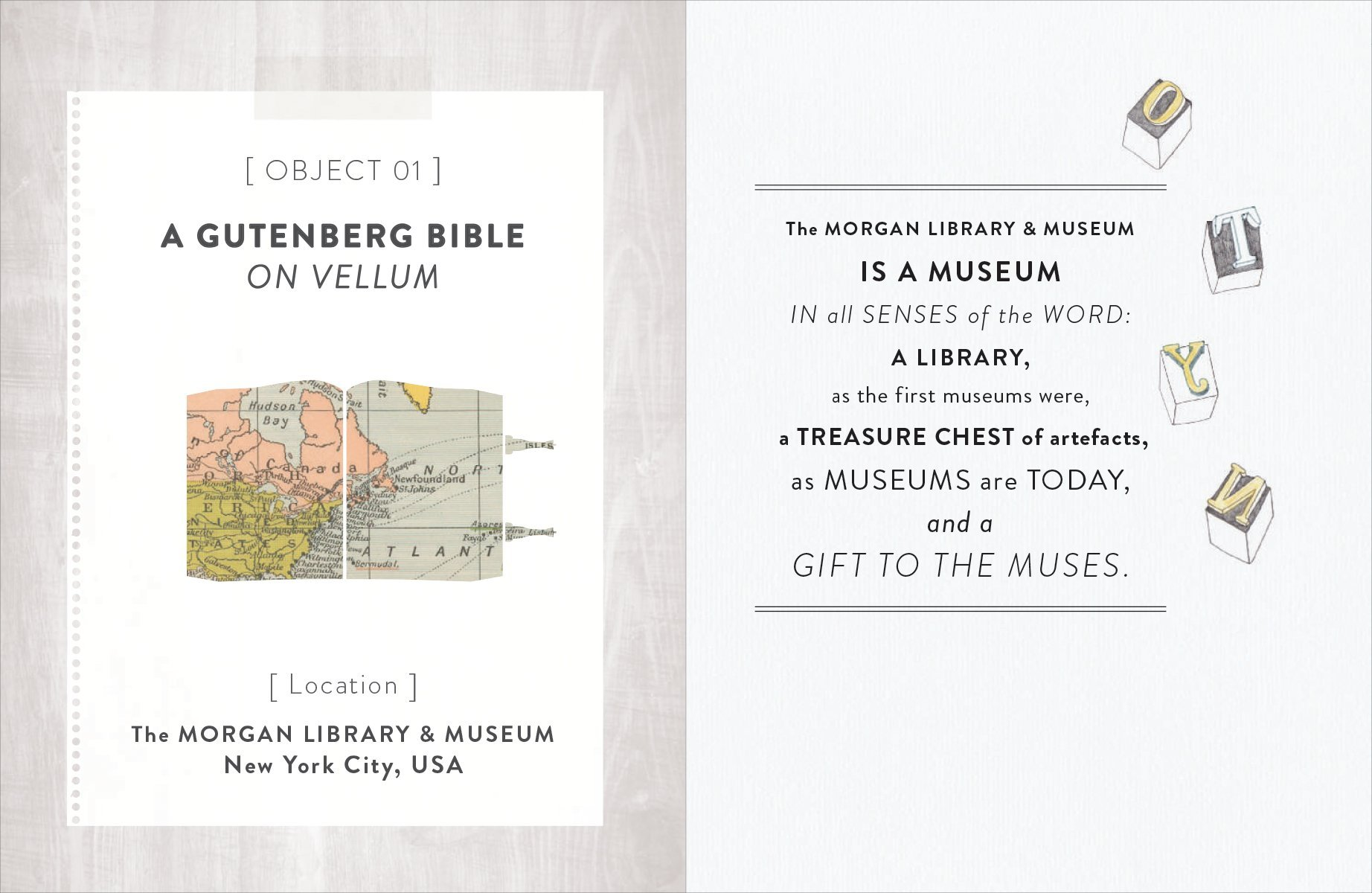The Secret Museum Some Treasures Are Too Precious To Display Morgan Wiring Diagram Molly Oldfield 9781770852570 Books