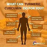 Organic Turmeric Curcumin Supplement 1500mg with