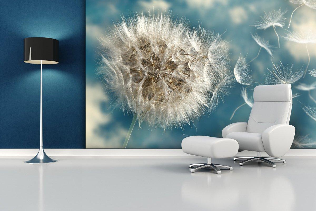 Einzigartig Fototapete Dandelion Seed - weitere Größen und Materialien wählbar  GA87